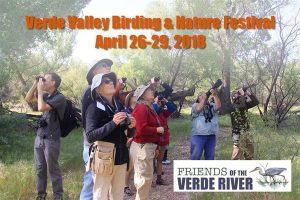 Verde Valley Birding & Nature Festival @ Cottonwood | Arizona | United States