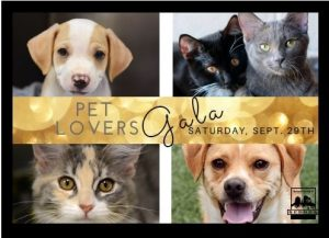 """TICKETS ON SALE NOW for """"Monte Carlo Night"""" - Pet Lover's Gala at Enchantment Resort @ Enchantment Resort 