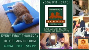 Yoga with Cats @ Humane Society of Sedona